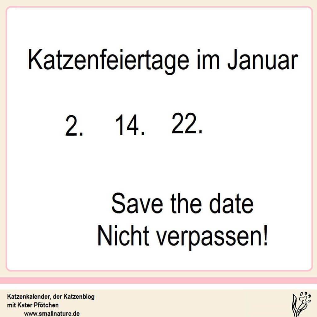 katzenfeiertage-im-katzenkalender-monat-januar