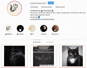 instagram-@katzenkalender