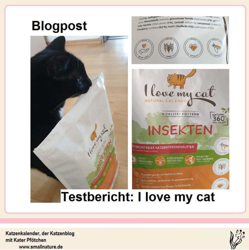 katzenfutter-aus-insekten-i-love-my-cat-im-testbericht