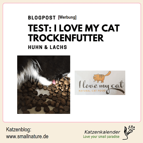 test-i_love_my_cat-trockenfutter-huhn-lachs