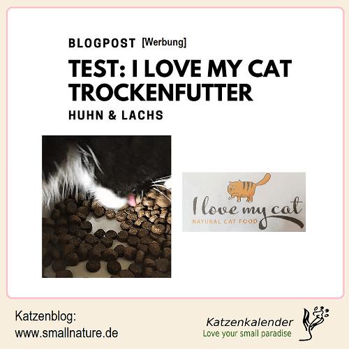 test-i_love_my_cat-trockenfutter-huhn-lachs