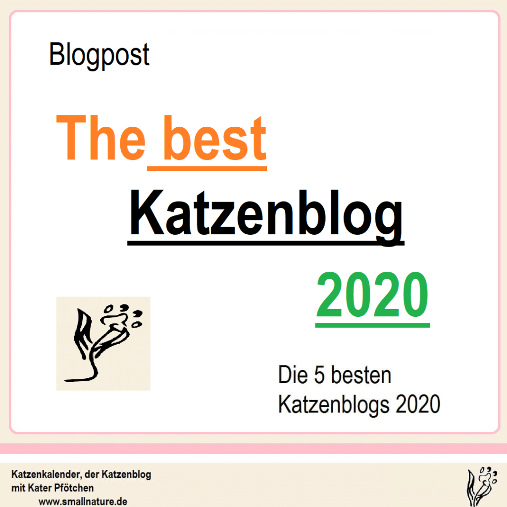 katzenblogs-2020