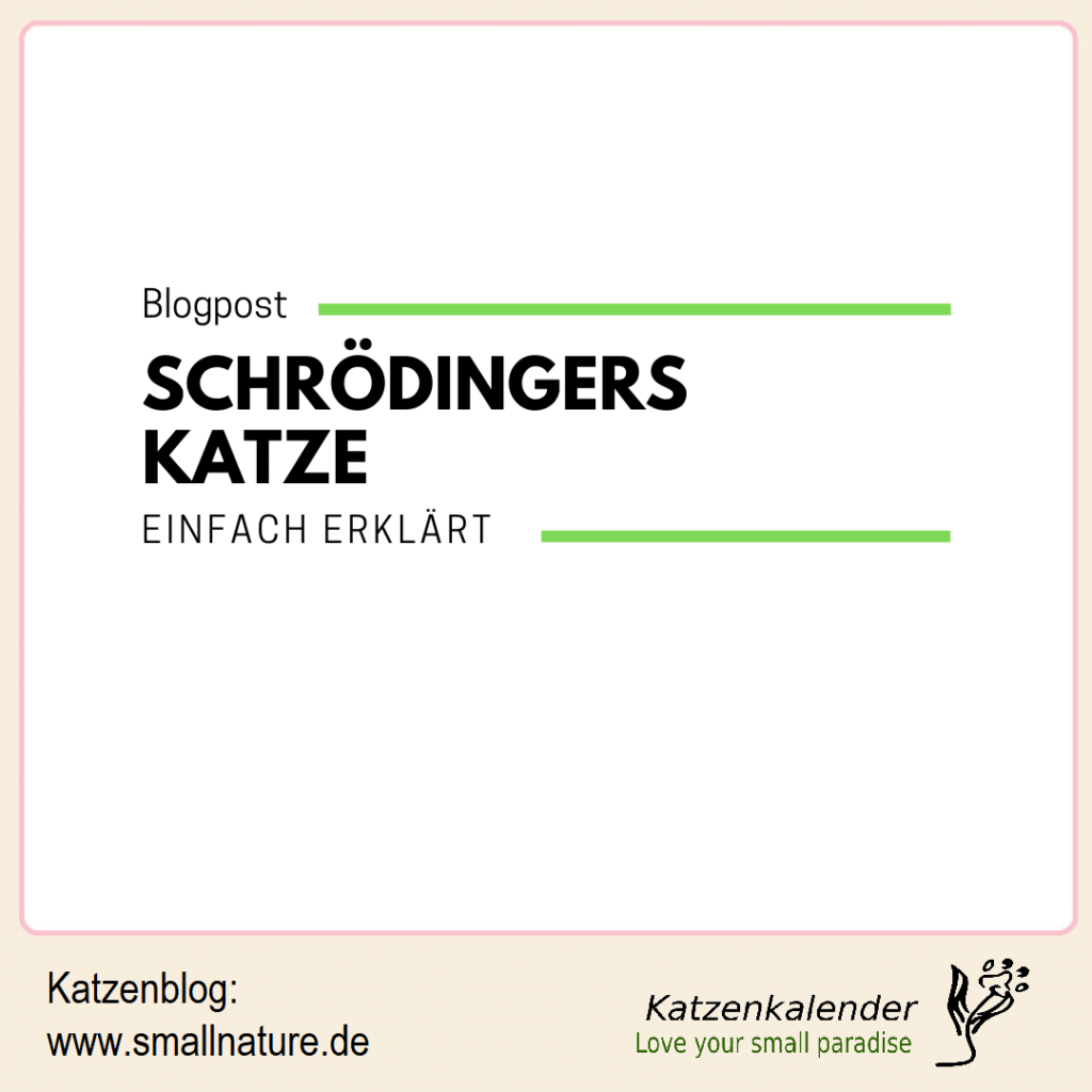 schroedingers-katze