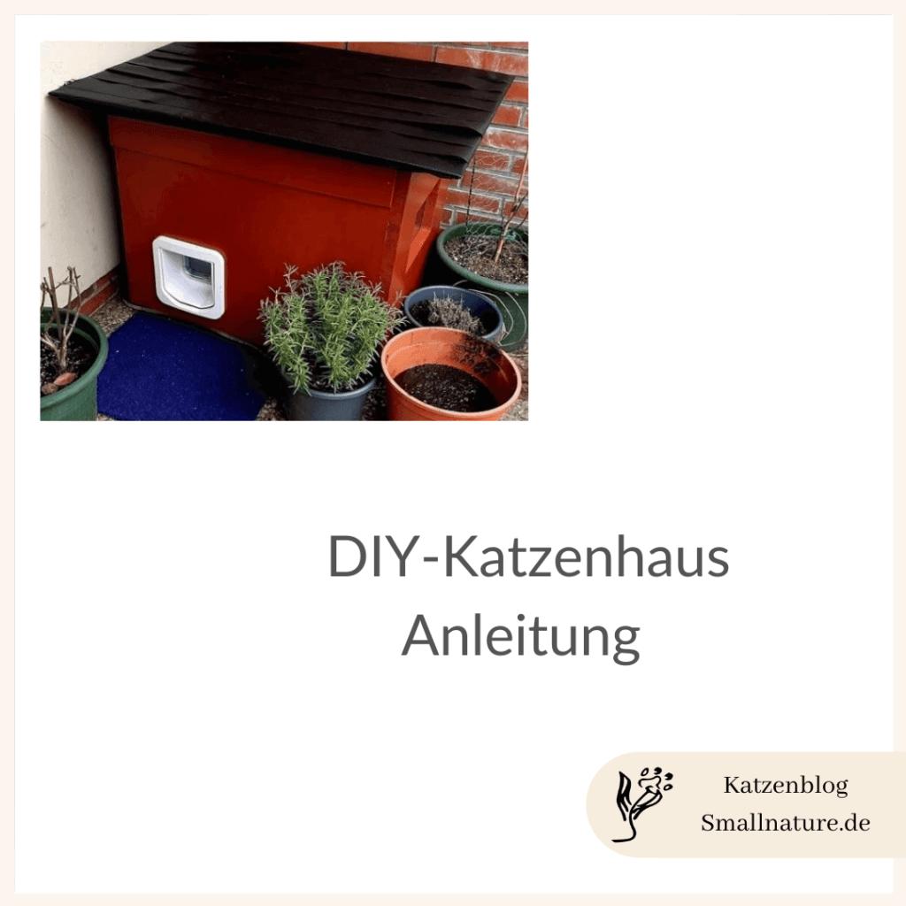 diy-katzenhaus-eine-anleitung-zum-nachbauen