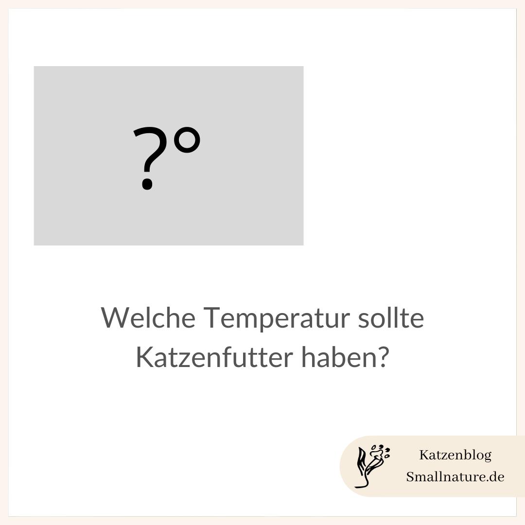 katzenfutter-temperatur