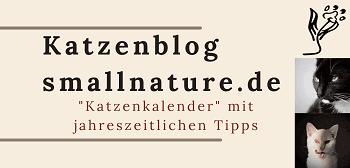 katzenblog-katzenkalender-smallnature